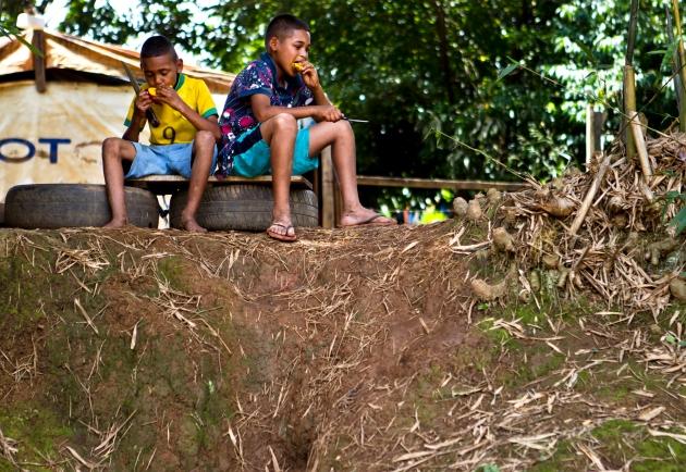2012_MASIN_BRAZIL_FARM4